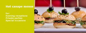 hot canapes menus by catering company in London