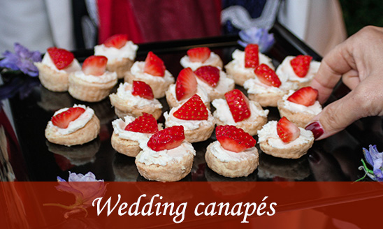 All in hand catering london for Wedding canape menu