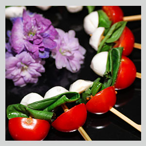 Vegetarian canape menus all in hand catering london for Vegetarian canape