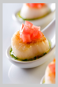 best wedding canapes catering